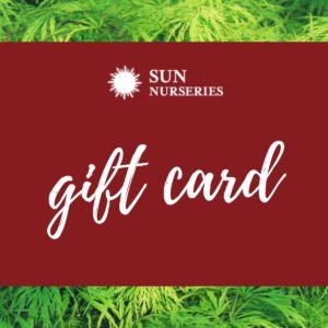 Sun Nurswries Giftcard