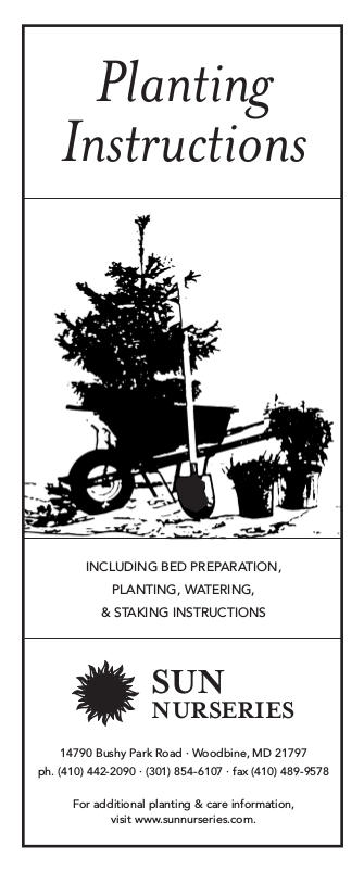 Planting Instructions | Sun Nurseries